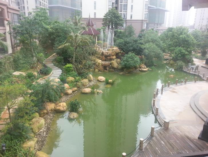 广州园林公司-假山水池工程案例